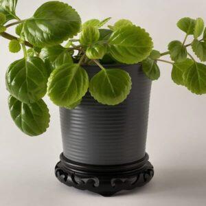 Decorative Pots and Saucers