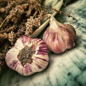 Fruit and Vegetable Bulbs