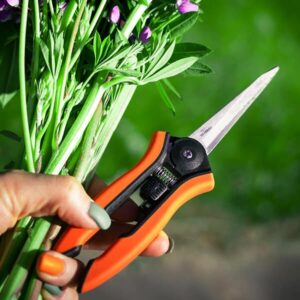Snips and Pruners