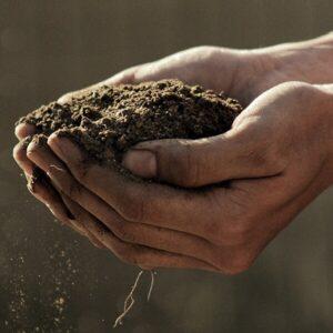 Soil and Soil Amendments
